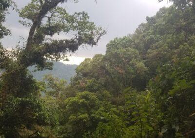 Chiapas - 21