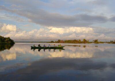 Rio Negro, Brazil - 197