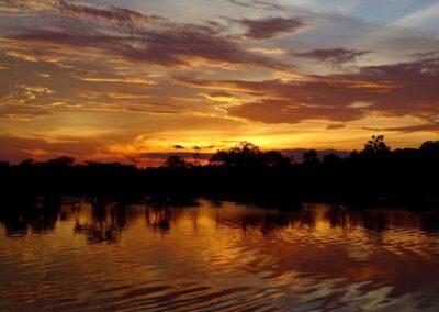 Rio Negro, Brazil - 199