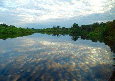 Rio Negro, Brazil - 285