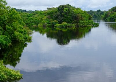Rio Negro, Brazil - 151