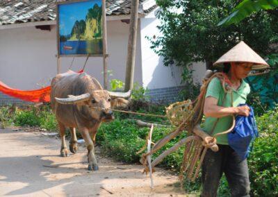 Guang Xi and Fujian, China - 9