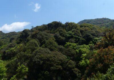 Southern Yunnan - 57